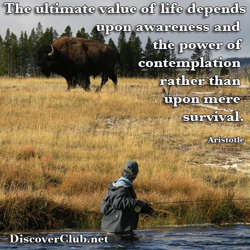 Buffalo Angler Awareness