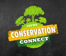 Conservation ConnectLogo