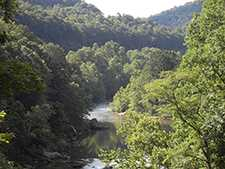 Youghiogheny River Gorge_from_great_allegheny_passage-225