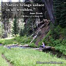 Solace in Nature