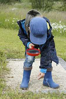 Boy Naturalist
