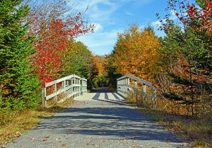 Scenic Bridge on the trail in Nova Scotia