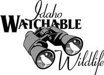 Idaho Watchable Wildlife