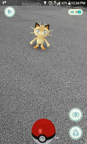Capturing a Meowth