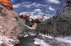 Zion NP in Winter