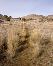Klamath Hills Trail