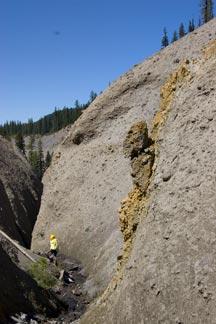A hazard of Whitehorse Creek.
