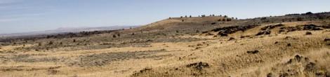 Thomas-Wright Battlefield