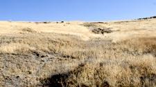 Remnants of the Applegate Trail - Lower Klamath National Wildlife Refuge.