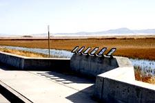 Overlook Area Adjacent to Stateline Road - Lower Klamath National Wildlife Refuge