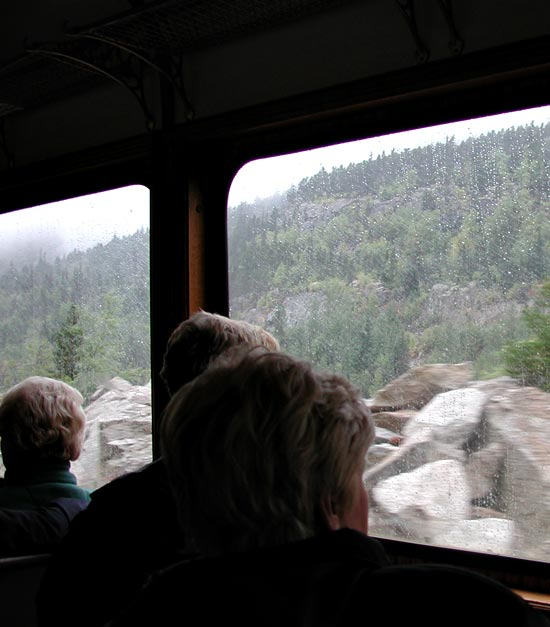 View from the White Pass & Yukon Route train.