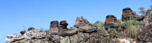 bootsbanner