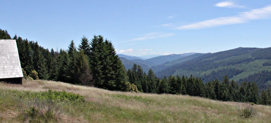 View from Dolason Prairie - Redwood National Park