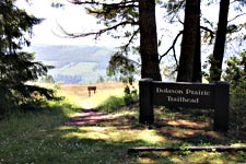 The Dolason Trailhead in Redwood National Park.