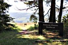 The Dolason Trailhead in Redwood National Park.