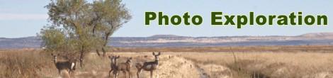 Photo Exploration