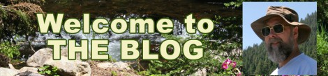 Welcome to The Blog