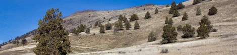 Climbing Hogback – Klamath Falls, Oregon, USA