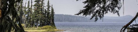 Waldo Lake and the Jim Weaver National Recreation Trail