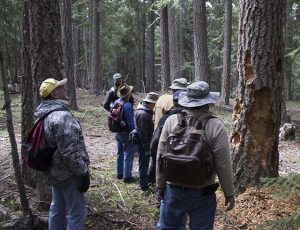 Klamath Basin Outdoor Group Examines a Damaged Tree