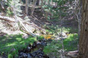 Sevenmile Creek at the Trailhead