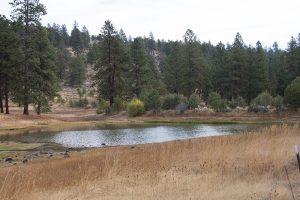 Van Meter Flat Pond