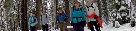 Winter on the Pacific Crest Trail